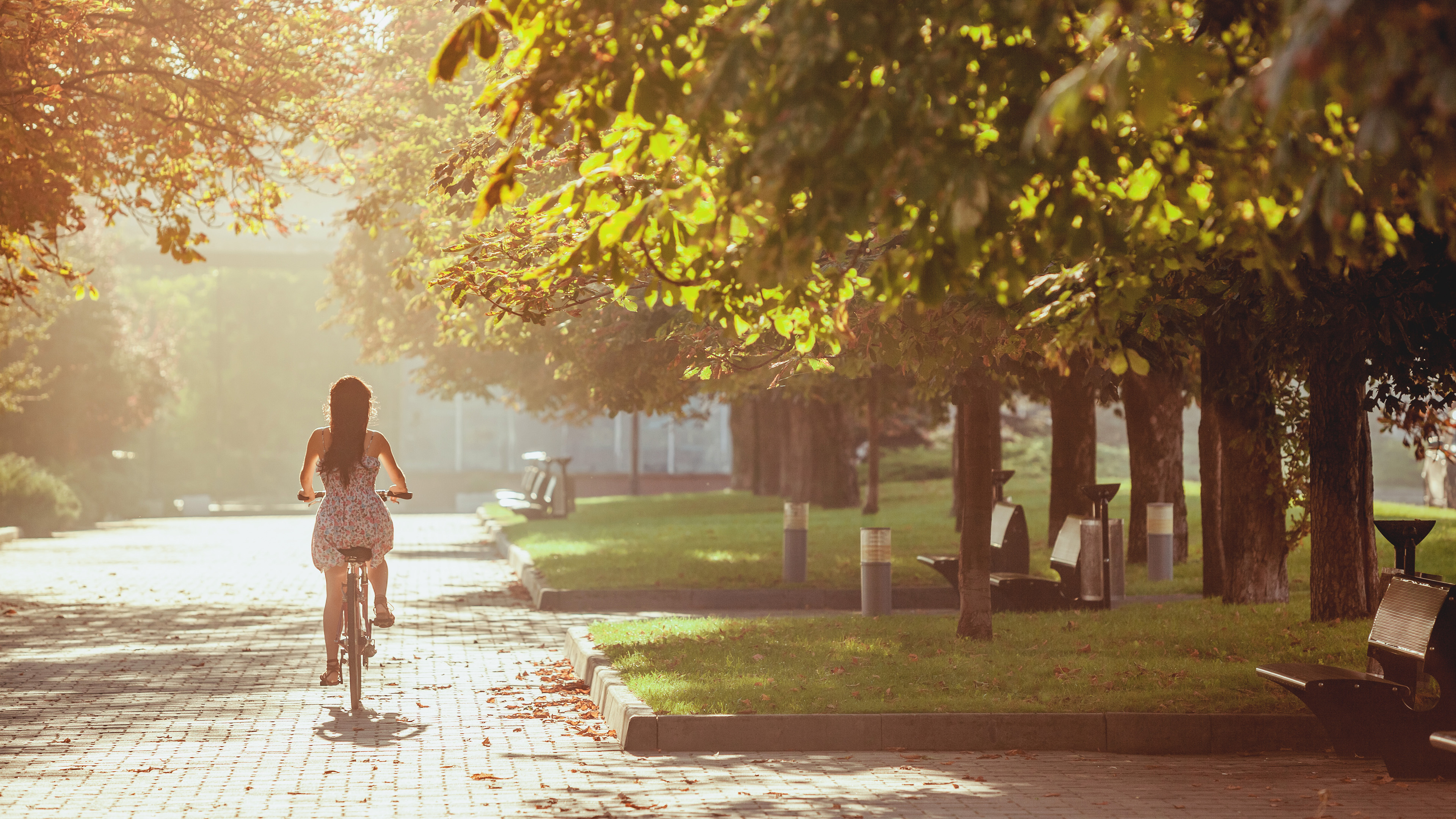The young girl with bicycle in park in summer