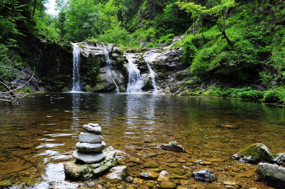 Espelho de água natural em zona de floresta