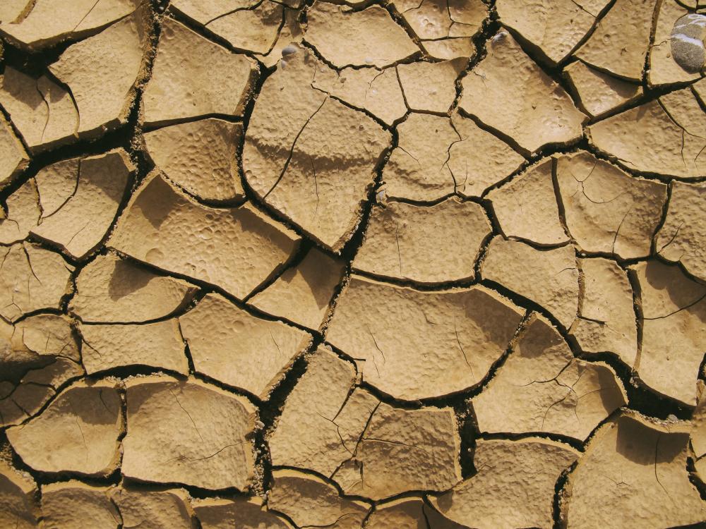 Solo seco e árido